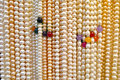 Pearl necklaces the close up of Royalty Free Stock Photography