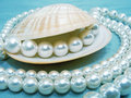 Pearls and shell sparkling close up Stock Images
