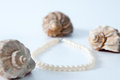 Pearls and shells on a white board Royalty Free Stock Images