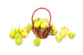 Pears in the basket and around the basket isolated on white Stock Photos