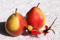 Pears and bird of paradise two red toy on a white lace tablecloth Royalty Free Stock Photos