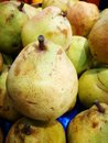 Pears on farmers market Royalty Free Stock Photo