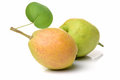Pears with green leaves Royalty Free Stock Photo