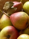 Pears on wooden bowl Royalty Free Stock Photo