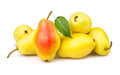 Pears yellow many leaf Royalty Free Stock Photography