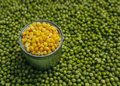 Peas corn background of and laid by hand remove debris canned and real Royalty Free Stock Photo