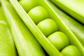 Peas in a pod Stock Photography