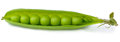 Peas in a pod Royalty Free Stock Photo