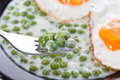 Peas whit eggs Stock Photos