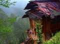 Peasant house with a wet roof standing on brink o farmhouse edge of precipice bamboo groves and rice terraces in the background Royalty Free Stock Photos