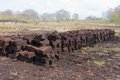 Peat digging in Dutch rural landscape Royalty Free Stock Photo