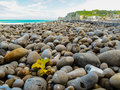 The pebble coast of English Channel Royalty Free Stock Photo