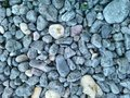 Pebble in cold colours Royalty Free Stock Photography