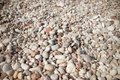Pebble stone background.Small colorful pebbles background, simplicity, daylight, stones.smooth waterworn pebble use for