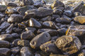 Pebble stone beach in morning light with harmonic reflections Royalty Free Stock Photo