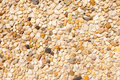 Pebbles Background Texture Pattern Royalty Free Stock Photography