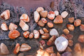 Pebbles colorful on the seashore with water Stock Photography