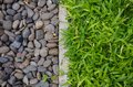 Pebbles and green lawn as background Royalty Free Stock Photography