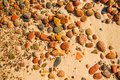 Pebbles stones on a sandy beach Royalty Free Stock Photo