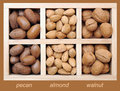 Pecan, almond, and walnut in box Royalty Free Stock Image