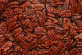 Pecan Background Royalty Free Stock Photography