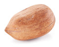 Pecan nut isolated on a white background Stock Images