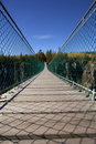 Pedestrian Suspension Bridge Royalty Free Stock Image