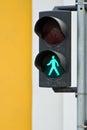 Pedestrian traffic light Royalty Free Stock Photos