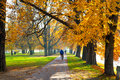 Pedestrian walkway for exercise lined up with beautiful fall trees Royalty Free Stock Photo