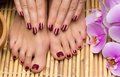 Pedicure and manicure in the salon spa Royalty Free Stock Photo