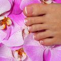 Pedicure with pink orchid flower beautiful female foot french manicure care spa closeup Stock Photos