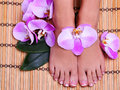 Pedicure with pink orchid flowers on bamboo mat beautiful female feet french manicure foot care spa Stock Photo