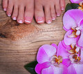 Pedicure with pink orchid flowers on wooden background beautiful female feet french manicure foot care spa Royalty Free Stock Image