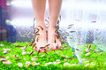 Pedicure spa treatment rufa garra fish Royalty Free Stock Photography