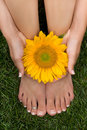 Pedicured Feet on Grass Royalty Free Stock Photo