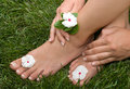 Pedicured Feet on Grass Royalty Free Stock Image