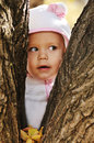 Peek a boo toddler girl hiding between trees Stock Image