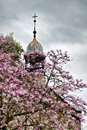 Peek chapel with magnolias memorial framed by on an april morning Royalty Free Stock Photo