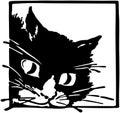 Peeking kittycat Stock Image