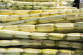 Peeled sugar cane ready to squeeze Royalty Free Stock Photos