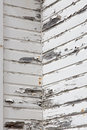 Peeling lead based paint represents and environmental hazard Stock Images