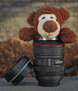 Peep bo teddy bear in the lens thermos coffee cup Stock Image