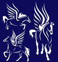 Pegasus collection vector Stock Photography