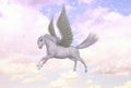 Pegasus flying horse stallion greek mythology illustration a winged divine ascending to the heaven Royalty Free Stock Photo