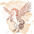 Pegasus supernatural beast. Sketch on a grunge background Royalty Free Stock Photo