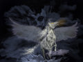Pegasus with wings spread open in cloudy sky with clouds and skull Royalty Free Stock Photos