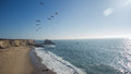 Pelicans flying over a beach with high cliffs view of flock of Stock Photo