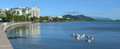 Pelicans swim against cairns waterfront skyline in queensland australia Royalty Free Stock Photo