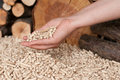Pellets- biomass Stock Photography