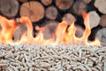Pellets biomass oak in flames stock photo Stock Image